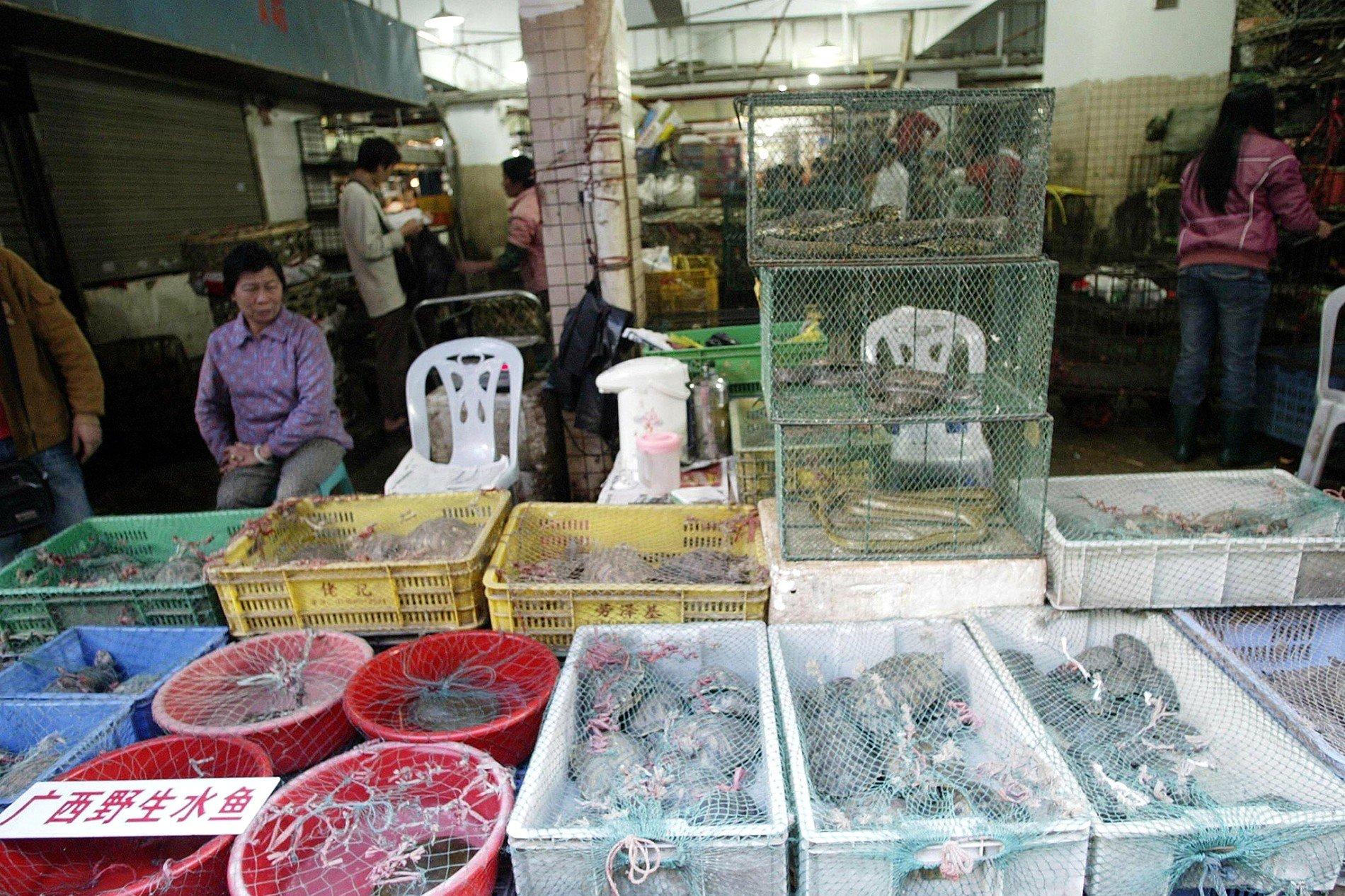 Dierenmarkt in Wohan